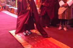 Intronisation Chokyi Nyima Rinpoche 2 (13)