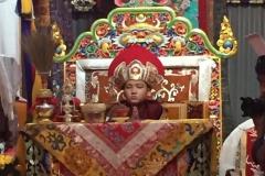 Intronisation Chokyi Nyima Rinpoche 2 (18)
