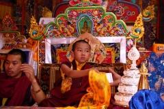 Chokyi Nyima Rinpoché (15)