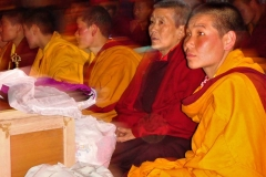 Chokyi Nyima Rinpoché (22)