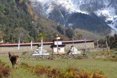 monastere-serang-mahasukha-europe 6